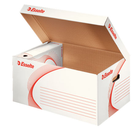 128900 - Esselte Standard Storage and Transportation Box - Pack of 10